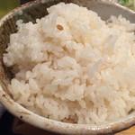 gyuutanyakitodategohandatenariya - 麦飯大盛り