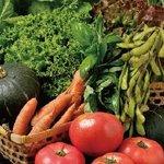 おず smoked和taste - 愛情いっぱいの契約農家のお野菜は、長沼と新篠津から!