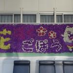 せちごぉて屋 - (2017/5月)御坊駅の花看板