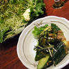 鳥小屋 - 料理写真:グリーンサラダと梅Q
