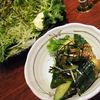 Torigoya - 料理写真:グリーンサラダと梅Q