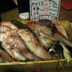 6897736 - 季節の魚たち