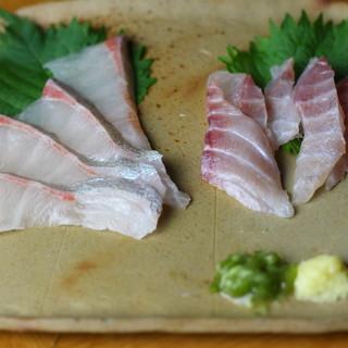【築地市場直送!】日替わり鮮魚をお刺身で☆