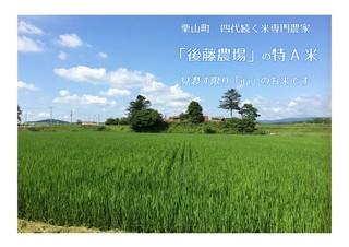 カレー食堂 心 - 栗山町・後藤農場
