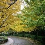 69081621 - 金沢動物園