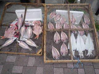 鮮魚・お食事処 山正