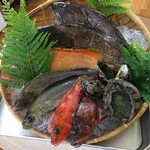 リストランテ マツシマ - 本日の素材:アラ、アカハタ、イサキ、カサゴ、鮑、ムール貝