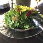 69129930 - 自家製バルサミコドレッシングのグリーンサラダ レギュラー 600円(税別)