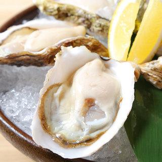 新鮮な牡蠣をご堪能下さい。
