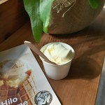 Hilo Homemade Ice Cream -