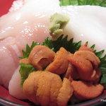 魚っ喰いの田 - 生ウニ 真イカ ホタテ丼 1,200円