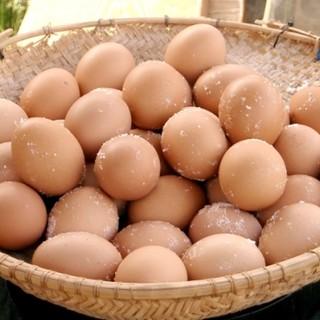 こだわり卵専門店 たまごや