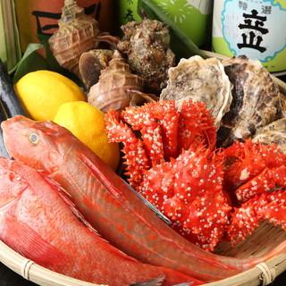 毎日築地から仕入れる新鮮な鮮魚たち