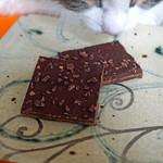 ダンデライオン チョコレート - ニブトフィーかな?