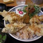 6937035 - (2011/1月)「小田原あじ天丼」真上から見たところ