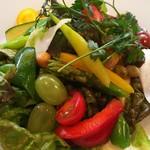 イタリアン 四谷マル - いろいろお野菜のコンビネーションサダラ
