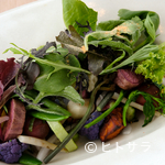 L'ISOLETTA - 淡路島の季節の豊かさをお皿の上で表現。『イタリアンサラダ』