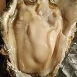 69442380 - 一番デカい岩牡蠣