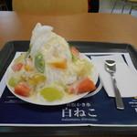 若松かき氷 白ねこ - 料理写真:美味しそうな白ねこ(=^ェ^=)