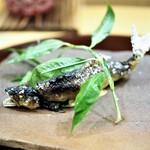 赤坂 詠月 - 料理写真:北川川産鮎塩焼き