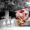 太閤園 - 料理写真: