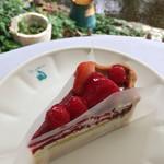 69542795 - 【京都限定】金平糖型 赤いフルーツとピスタチオフィナンシェのタルト 737円