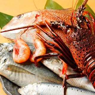 鮮魚は築地から毎日買付!朝仕入れたものをその日のうちにご提供