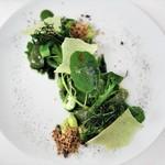 リストランテ センソ - 料理写真:森緑