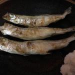 炉端 蝦夷の里 - 本物の柳葉魚(ししゃも)