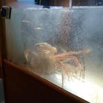 はれや別邸 - 蟹の水槽がお出迎え