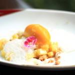 鹿児島のマンゴーのソルベ ココナッツとそのバブル バニラのクランブル