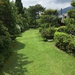 プリムローズ - 緑の綺麗なお庭