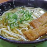 おくのうどん店 - 料理写真:天ぷらうどん