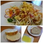 P.P,Cオリーブ - ◆共通・・サラダ・・キャベツが多いですがミモザ風で、 少し甘みを感じるドレッシングがタップリかけられているのはいいですね。 ◆共通・・パン。どちらもソフトな食感で、胡麻入りとチーズ入りの2種類。オリーブオイルで頂きます。