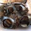 レインボープラザ - 料理写真: