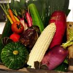 69826159 - 本日のお野菜