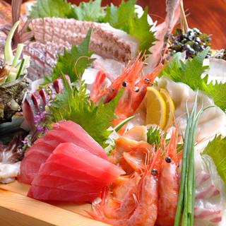 鮮度抜群♪厳選した産地より届く鮮魚は美味揃い
