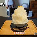 モリカ - 夏みかん氷