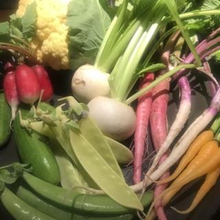 美瑛農家さんの新鮮な無農薬野菜使用しております