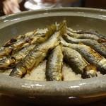 割烹 青柳 - 高津川の竿釣「天然活〆鮎(あゆ)」(