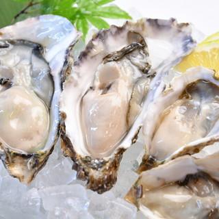 瀬戸内海の生食海域で養殖した、牡蠣を提供