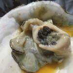 69969857 - 岩牡蠣(断面)