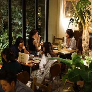 緑に囲まれた店内で、ゆっくりお食事をお楽しみ下さい