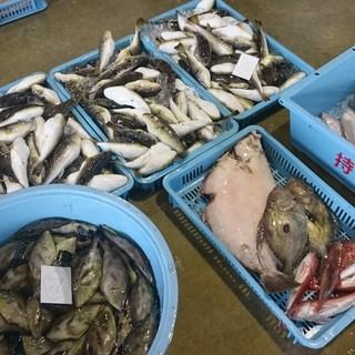 大津港の水揚げを直接買い上げるので、いつも魚が新鮮!