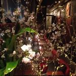 鉄板焼ばらもんや - 春の桜祭り