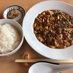 やさい中華 四川菜 - 極み麻婆豆腐定食のメイン