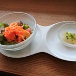 POLPO - 料理写真:サラダと前菜