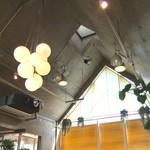 サンデーブランチ - 天井が高くて緑のある明るいお店です♬