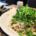 松玄 - ランチ 旨辛肉パクチー蕎麦セット