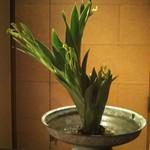 Muromachi Wakuden - 玄関口のお花は美事